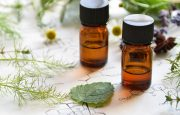 Using Herbs for Lupus