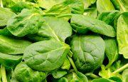 Salads for Lupus