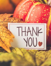 Your Thanksgiving With Lupus Survival Guide
